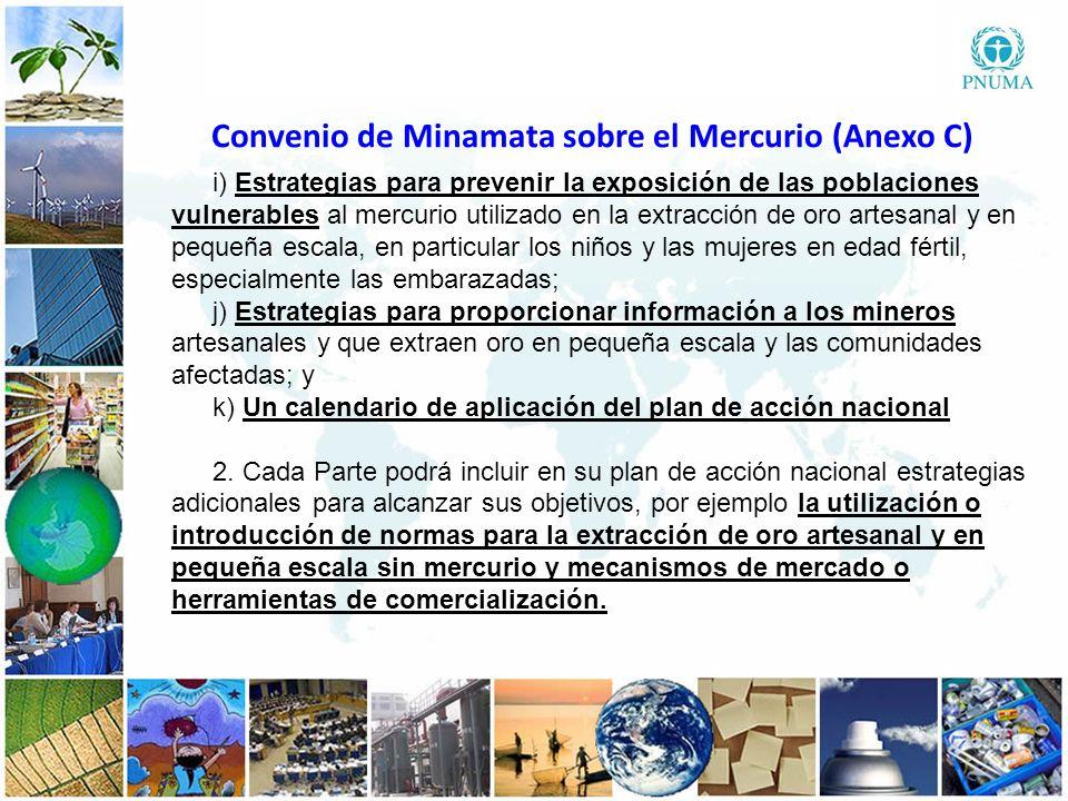 4 44 i) Estrategias para prevenir la exposición de las poblaciones vulnerables al mercurio utilizado en la extracción de oro artesanal y en pequeña es