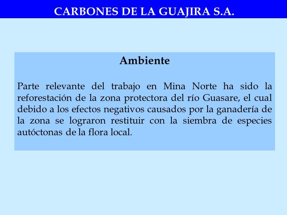 Ambiente Parte relevante del trabajo en Mina Norte ha sido la reforestación de la zona protectora del río Guasare, el cual debido a los efectos negati
