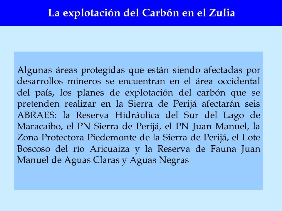 La explotación del Carbón en el Zulia Algunas áreas protegidas que están siendo afectadas por desarrollos mineros se encuentran en el área occidental