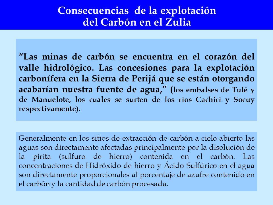 Las minas de carbón se encuentra en el corazón del valle hidrológico. Las concesiones para la explotación carbonífera en la Sierra de Perijá que se es