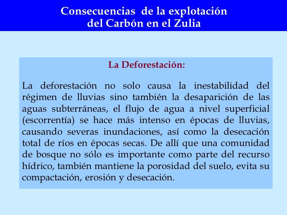 La Deforestación: La deforestación no solo causa la inestabilidad del régimen de lluvias sino también la desaparición de las aguas subterráneas, el fl