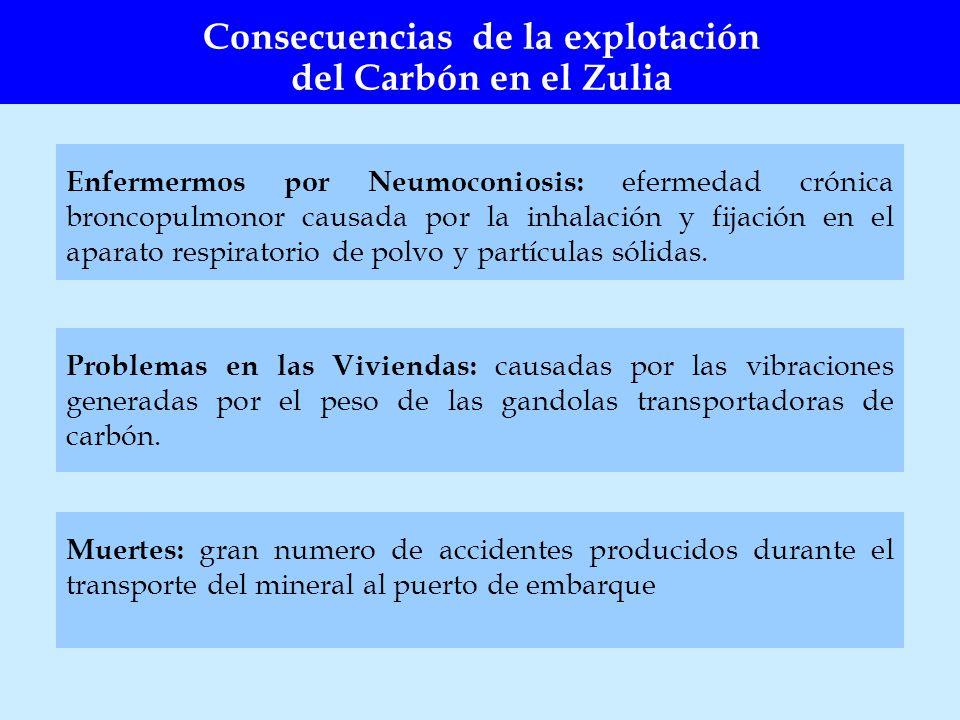 Enfermermos por Neumoconiosis: efermedad crónica broncopulmonor causada por la inhalación y fijación en el aparato respiratorio de polvo y partículas