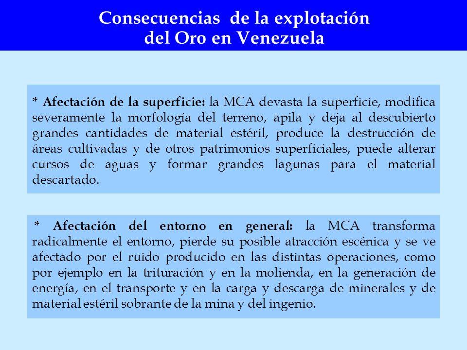 * Afectación de la superficie: la MCA devasta la superficie, modifica severamente la morfología del terreno, apila y deja al descubierto grandes canti