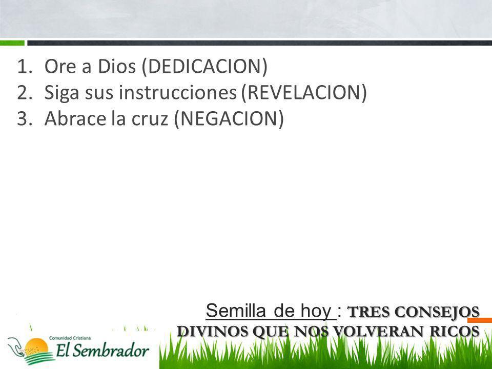 TRES CONSEJOS DIVINOS QUE NOS VOLVERAN RICOS Semilla de hoy : TRES CONSEJOS DIVINOS QUE NOS VOLVERAN RICOS 1.Ore a Dios (DEDICACION) 2.Siga sus instru