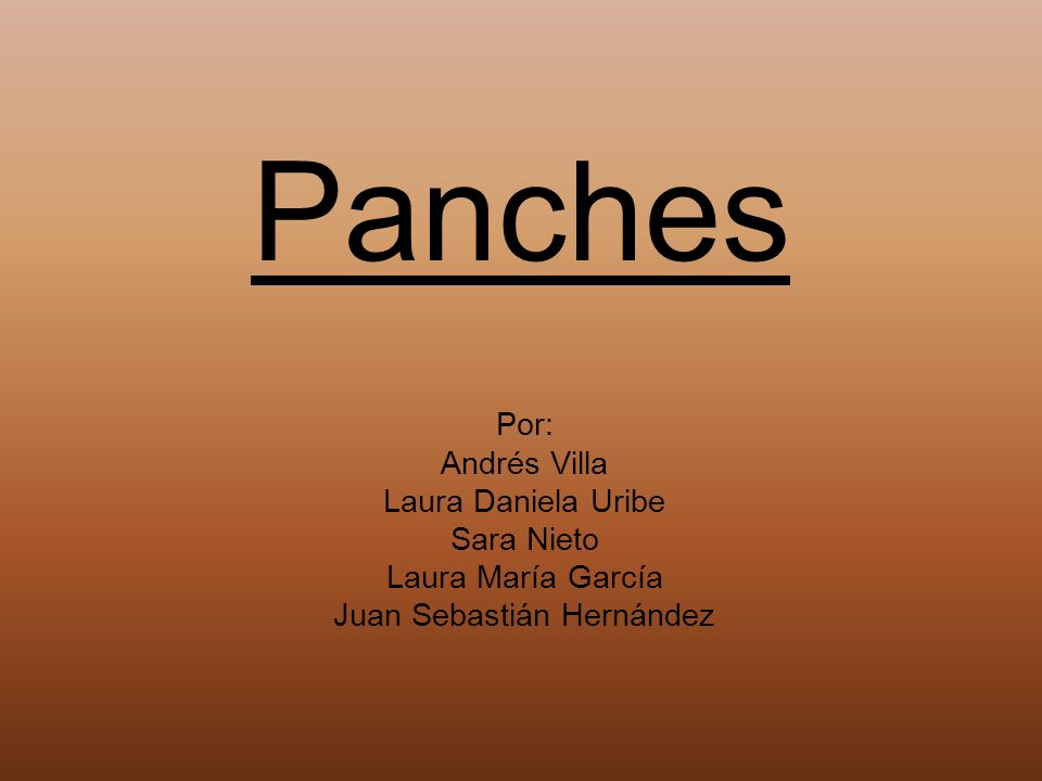 Panches Por: Andrés Villa Laura Daniela Uribe Sara Nieto Laura María García Juan Sebastián Hernández