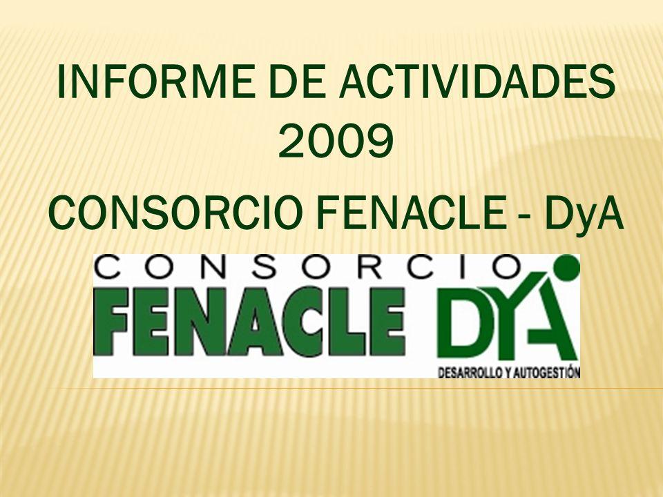 INFORME DE ACTIVIDADES 2009 CONSORCIO FENACLE - DyA