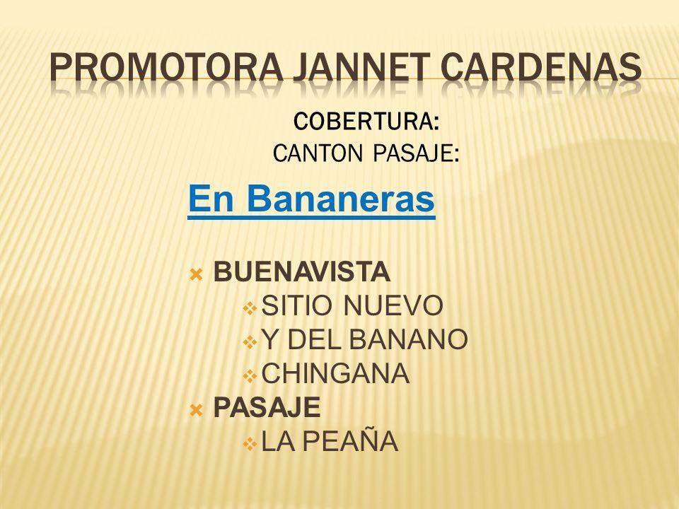 En Bananeras BUENAVISTA SITIO NUEVO Y DEL BANANO CHINGANA PASAJE LA PEAÑA COBERTURA: CANTON PASAJE: