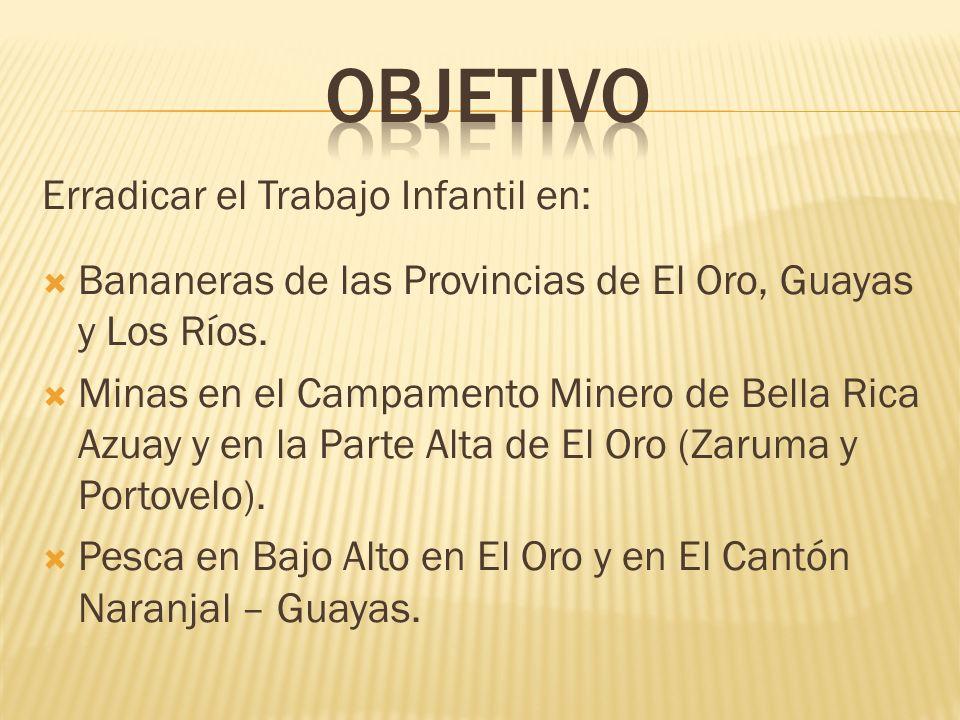 Erradicar el Trabajo Infantil en: Bananeras de las Provincias de El Oro, Guayas y Los Ríos.