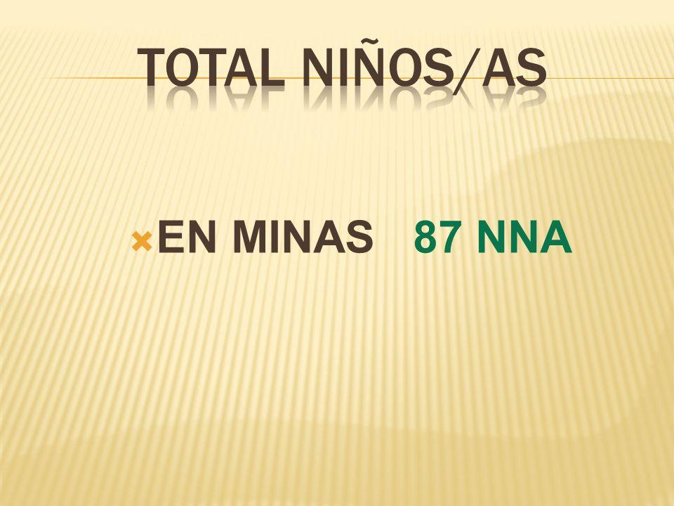 EN MINAS 87 NNA
