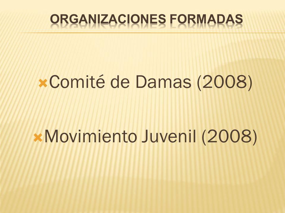 Comité de Damas (2008) Movimiento Juvenil (2008)