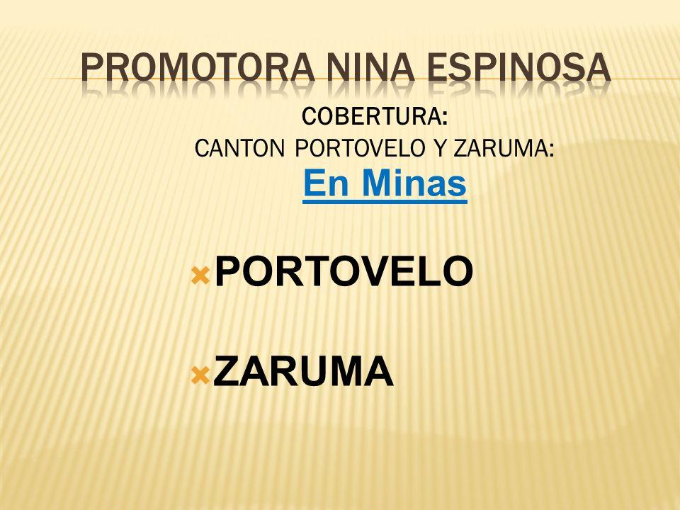 En Minas PORTOVELO ZARUMA COBERTURA: CANTON PORTOVELO Y ZARUMA: