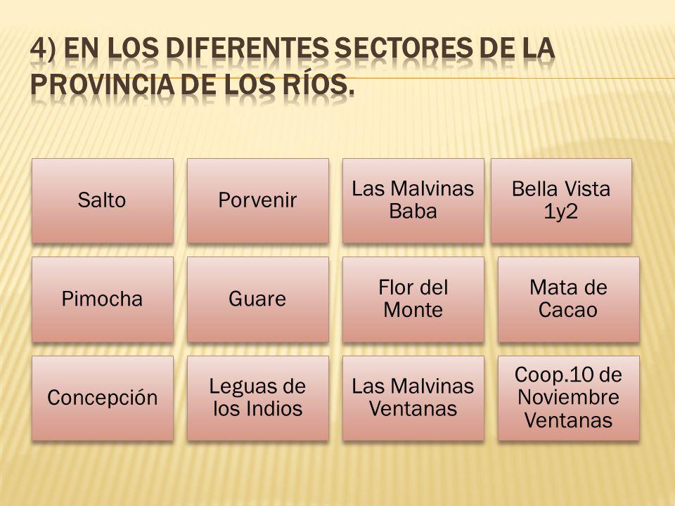 SaltoPorvenir Las Malvinas Baba Bella Vista 1y2 PimochaGuare Flor del Monte Mata de Cacao Concepción Leguas de los Indios Las Malvinas Ventanas Coop.10 de Noviembre Ventanas