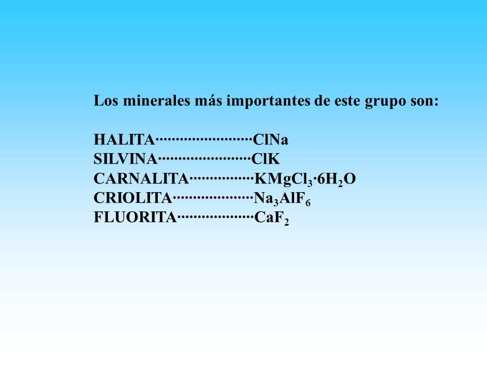 Los minerales más importantes de este grupo son: HALITA························ClNa SILVINA·······················ClK CARNALITA················KMgCl 3