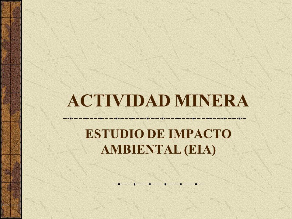 ACTIVIDAD MINERA ESTUDIO DE IMPACTO AMBIENTAL (EIA)