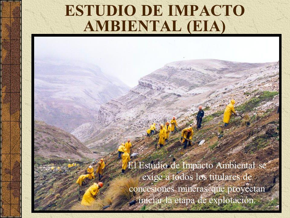 El Estudio de Impacto Ambiental se exige a todos los titulares de concesiones mineras que proyectan iniciar la etapa de explotación.
