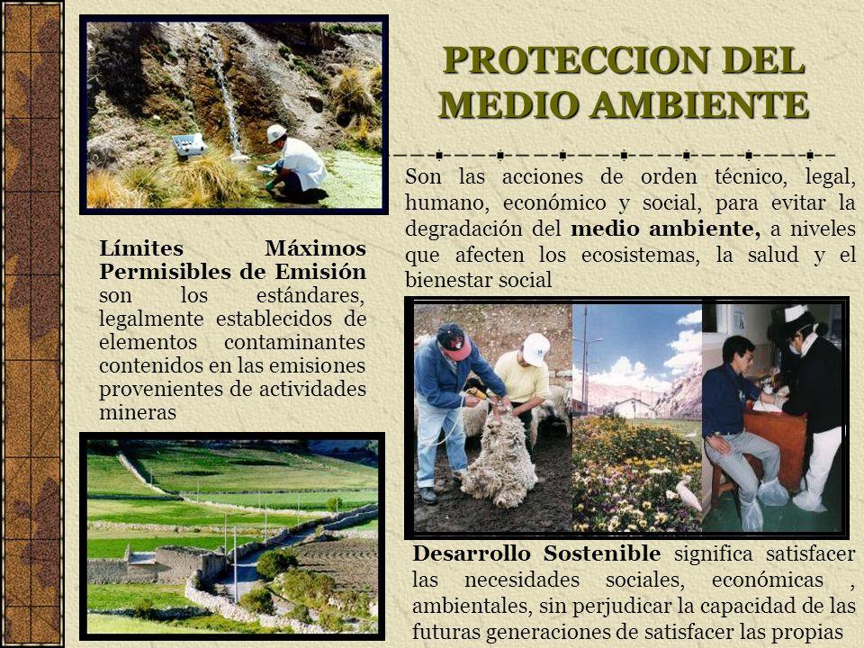 PROTECCION DEL MEDIO AMBIENTE Límites Máximos Permisibles de Emisión son los estándares, legalmente establecidos de elementos contaminantes contenidos