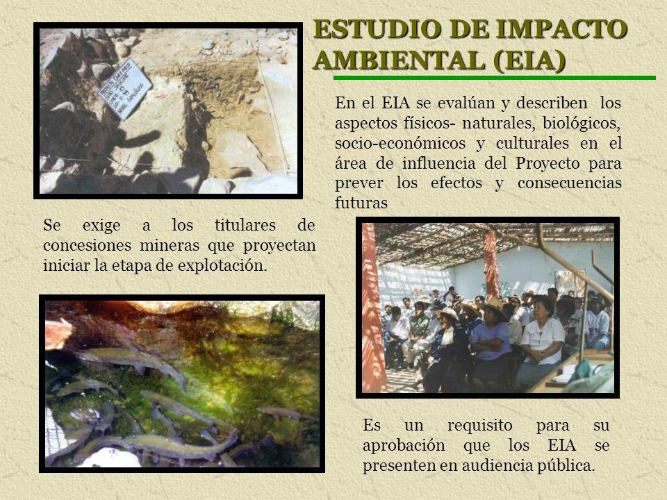 ESTUDIO DE IMPACTO AMBIENTAL (EIA) Se exige a los titulares de concesiones mineras que proyectan iniciar la etapa de explotación. En el EIA se evalúan