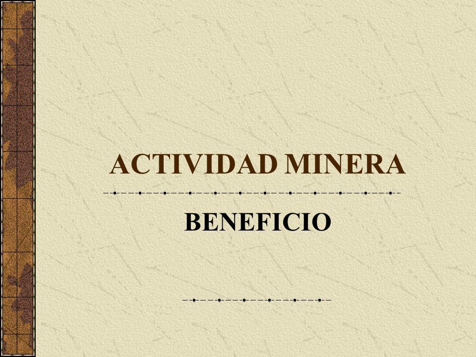ACTIVIDAD MINERA BENEFICIO