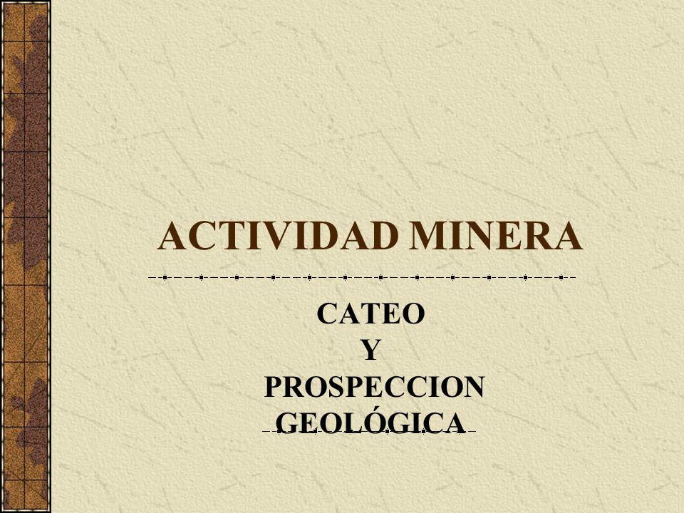 ACTIVIDAD MINERA CATEO Y PROSPECCION GEOLÓGICA