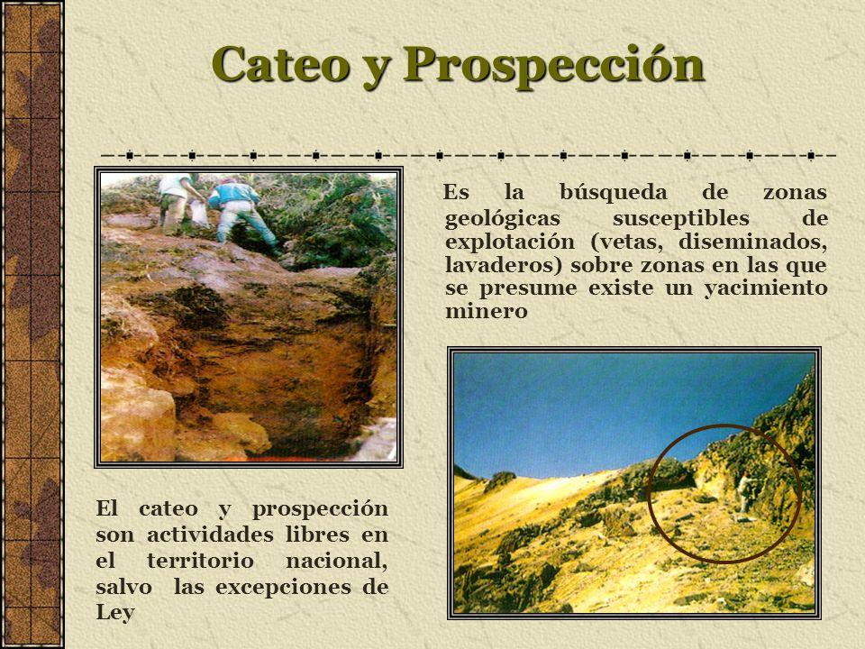 Cateo y Prospección Es la búsqueda de zonas geológicas susceptibles de explotación (vetas, diseminados, lavaderos) sobre zonas en las que se presume existe un yacimiento minero El cateo y prospección son actividades libres en el territorio nacional, salvo las excepciones de Ley
