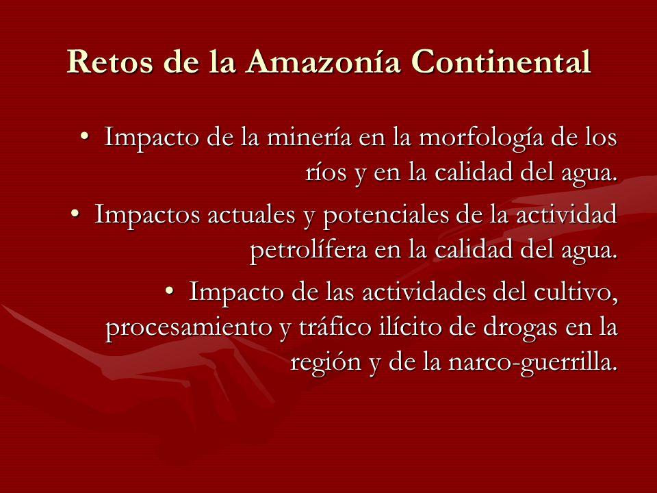 Retos de la Amazonía Continental Impacto de la minería en la morfología de los ríos y en la calidad del agua.Impacto de la minería en la morfología de