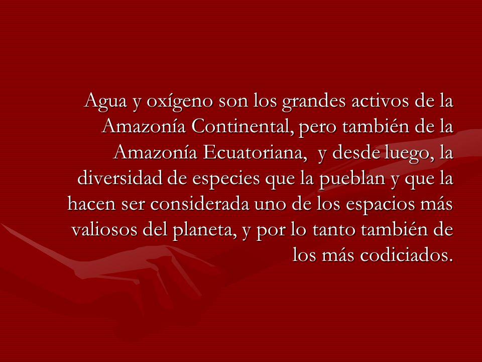 Agua y oxígeno son los grandes activos de la Amazonía Continental, pero también de la Amazonía Ecuatoriana, y desde luego, la diversidad de especies q