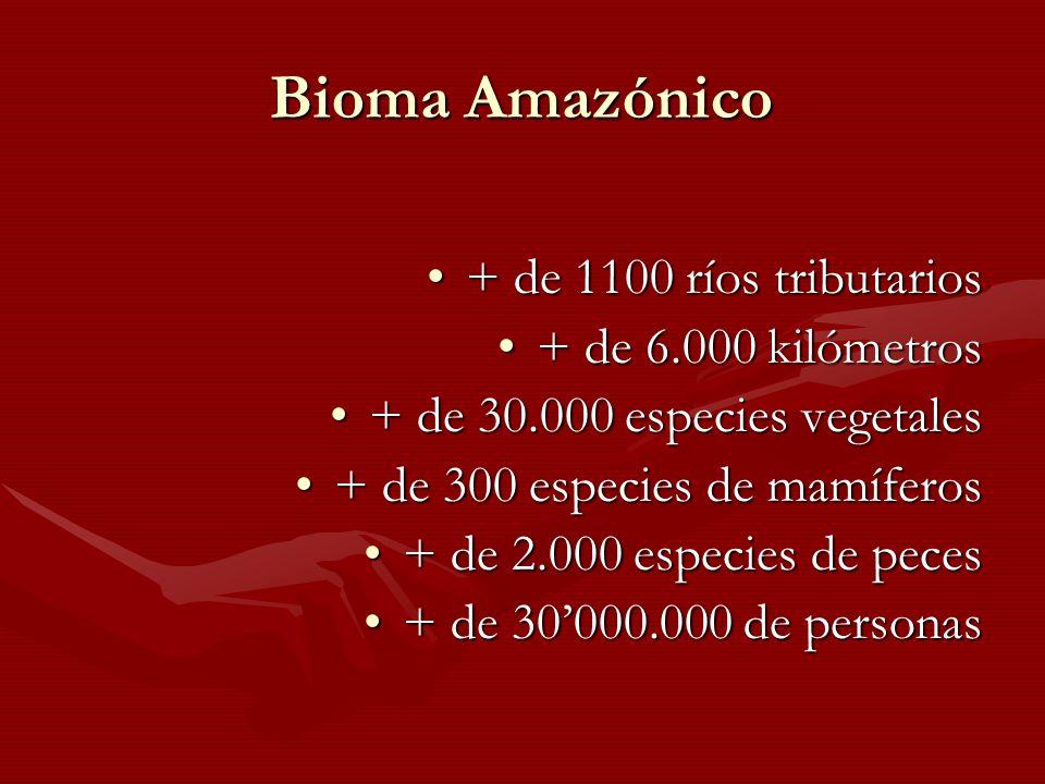 Bioma Amazónico + de 1100 ríos tributarios+ de 1100 ríos tributarios + de 6.000 kilómetros+ de 6.000 kilómetros + de 30.000 especies vegetales+ de 30.