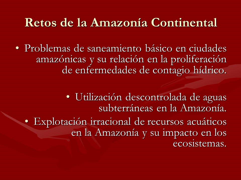 Retos de la Amazonía Continental Problemas de saneamiento básico en ciudades amazónicas y su relación en la proliferación de enfermedades de contagio