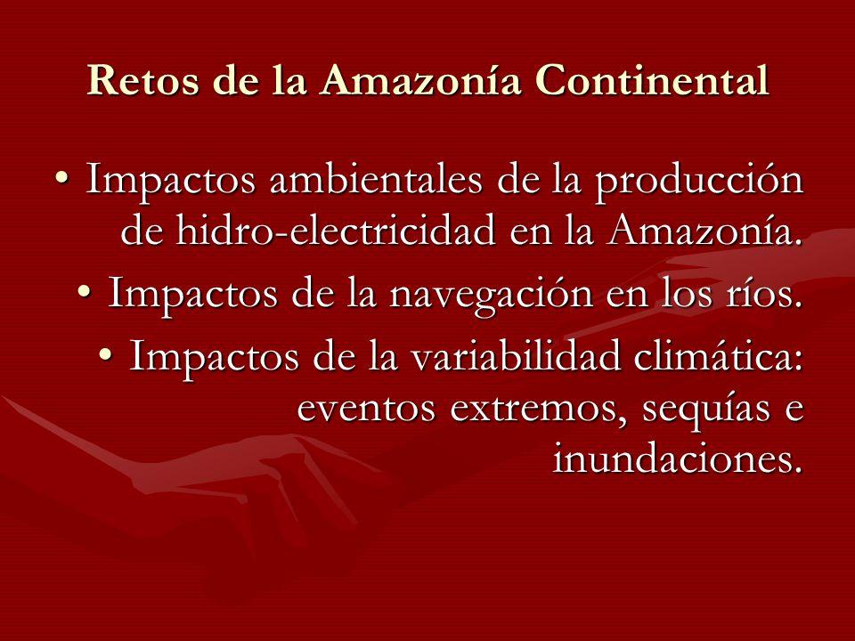 Retos de la Amazonía Continental Impactos ambientales de la producción de hidro-electricidad en la Amazonía.Impactos ambientales de la producción de h