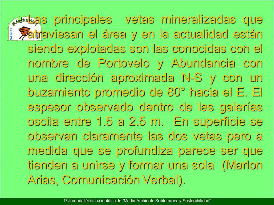 Las principales vetas mineralizadas que atraviesan el área y en la actualidad están siendo explotadas son las conocidas con el nombre de Portovelo y A