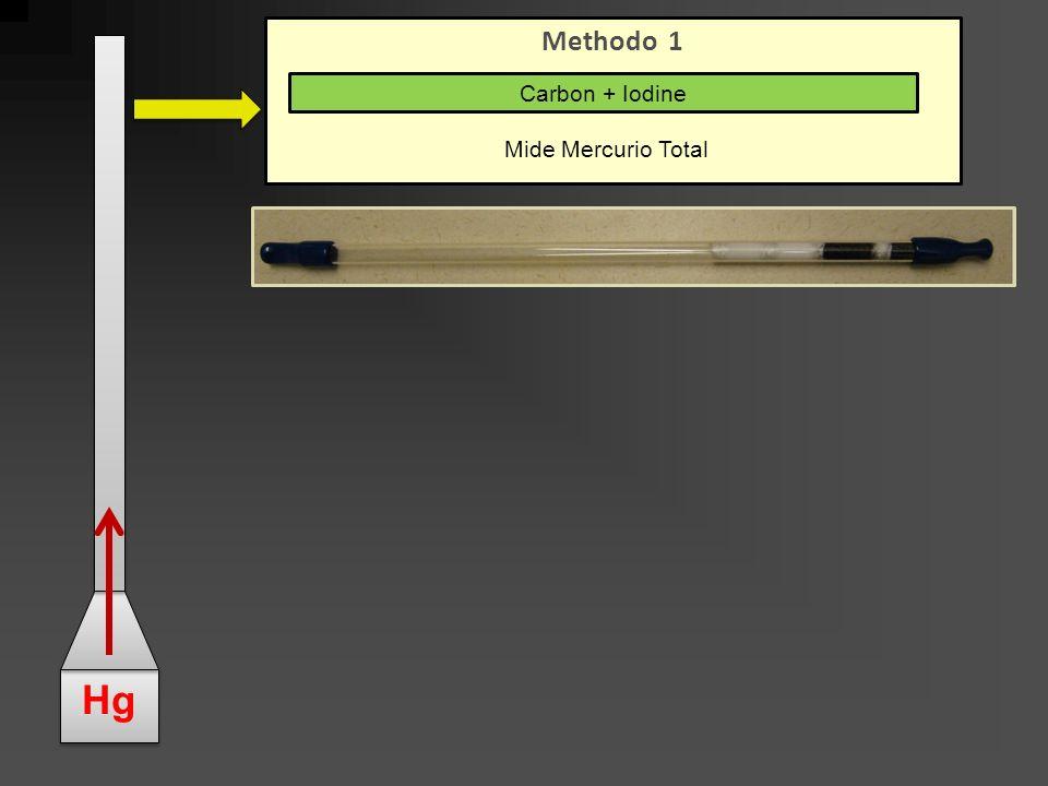 Hg Methodo 1 Carbon + Iodine Mide Mercurio Total