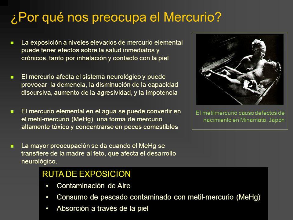 ¿Por qué nos preocupa el Mercurio? La exposición a niveles elevados de mercurio elemental puede tener efectos sobre la salud inmediatos y crónicos, ta