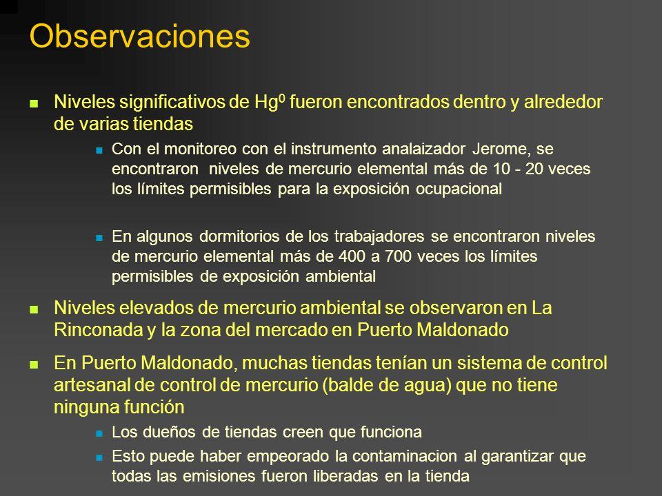 Observaciones Niveles significativos de Hg 0 fueron encontrados dentro y alrededor de varias tiendas Con el monitoreo con el instrumento analaizador J