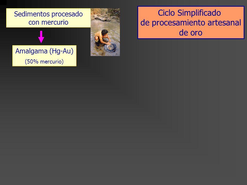 Sedimentos procesado con mercurio Amalgama (Hg-Au) (50% mercurio) Amalgama refogado (2-15% mercurio) Quemado en la mina (campo) Ciclo Simplificado de procesamiento artesanal de oro