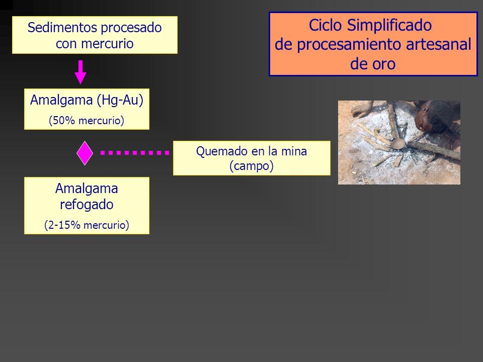 Sedimentos procesado con mercurio Quemado en la mina (campo) Oro purificado Amalgama (Hg-Au) (50% mercurio) Amalgama refogado (2-15% mercurio) Quemado en las tiendas de oro (urbano) Ciclo Simplificado de procesamiento artesanal de oro