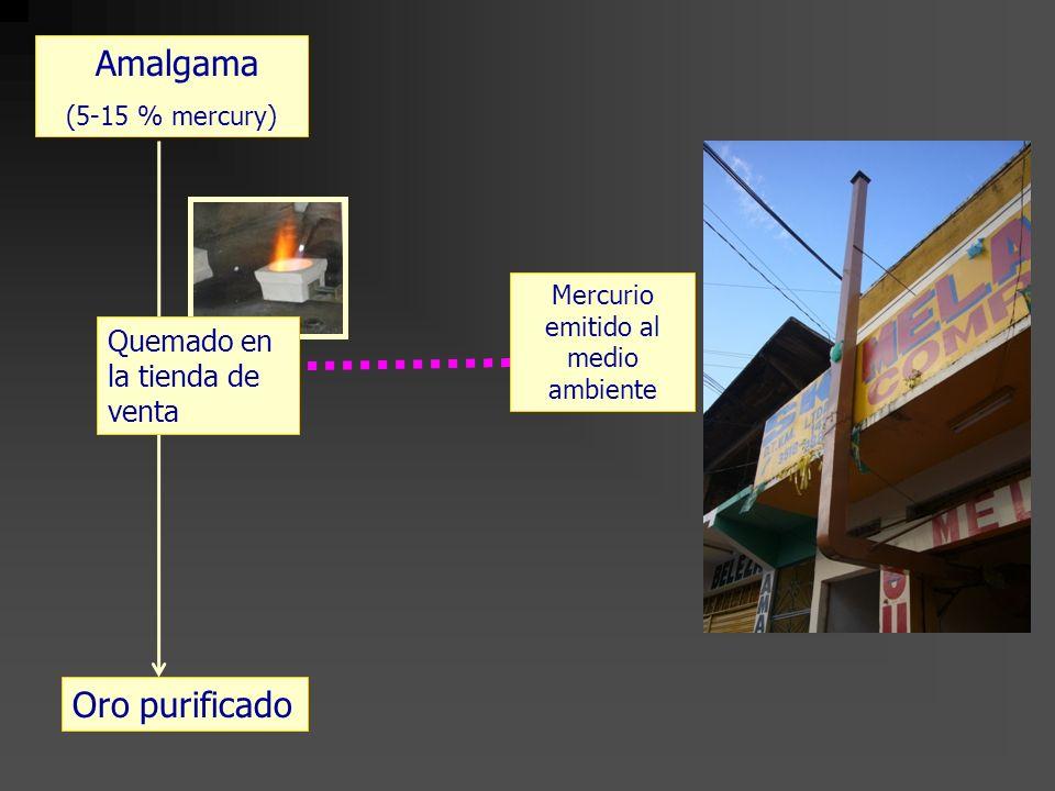 Oro purificado Amalgama (5-15 % mercury) Mercurio emitido al medio ambiente Quemado en la tienda de venta
