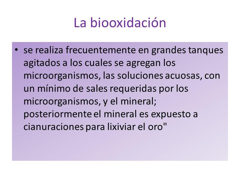 La biooxidación se realiza frecuentemente en grandes tanques agitados a los cuales se agregan los microorganismos, las soluciones acuosas, con un míni