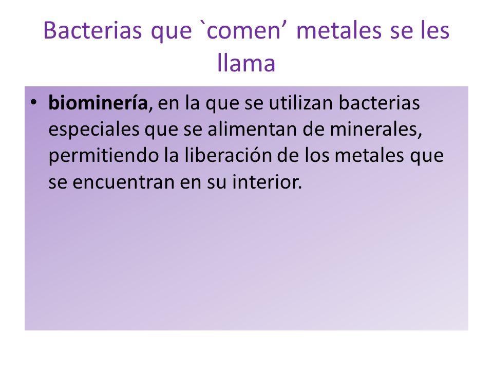 Bacterias que `comen metales se les llama biominería, en la que se utilizan bacterias especiales que se alimentan de minerales, permitiendo la liberac