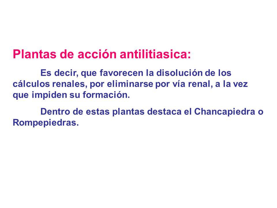 2.Inflamacion Cronica delos riñones Vainas de Judia