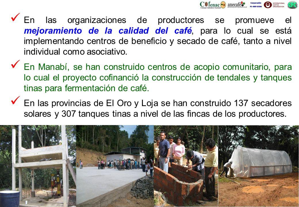 En las organizaciones de productores se promueve el mejoramiento de la calidad del café, para lo cual se está implementando centros de beneficio y sec