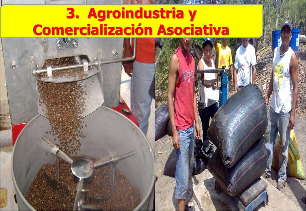 3. Agroindustria y Comercialización Asociativa