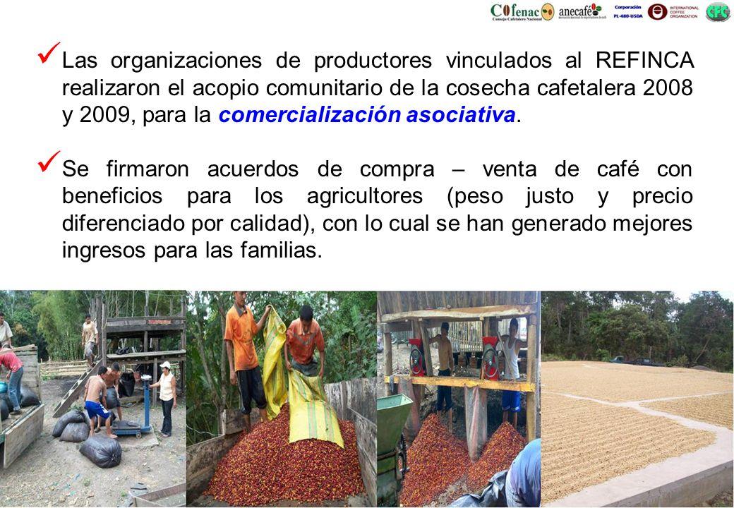 Las organizaciones de productores vinculados al REFINCA realizaron el acopio comunitario de la cosecha cafetalera 2008 y 2009, para la comercializació