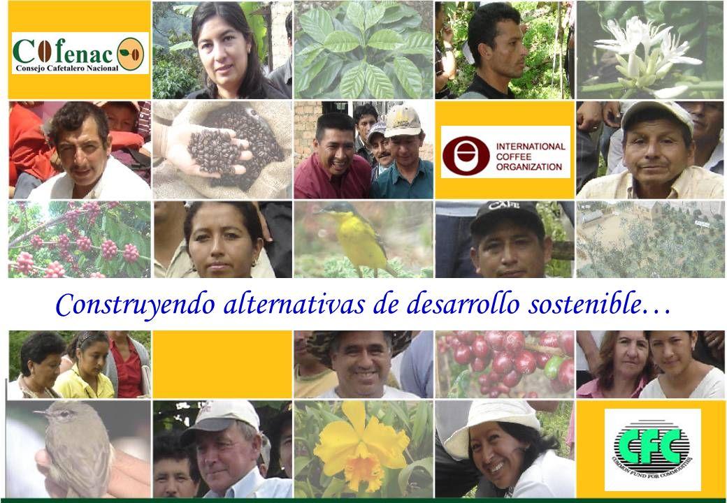Construyendo alternativas de desarrollo sostenible…