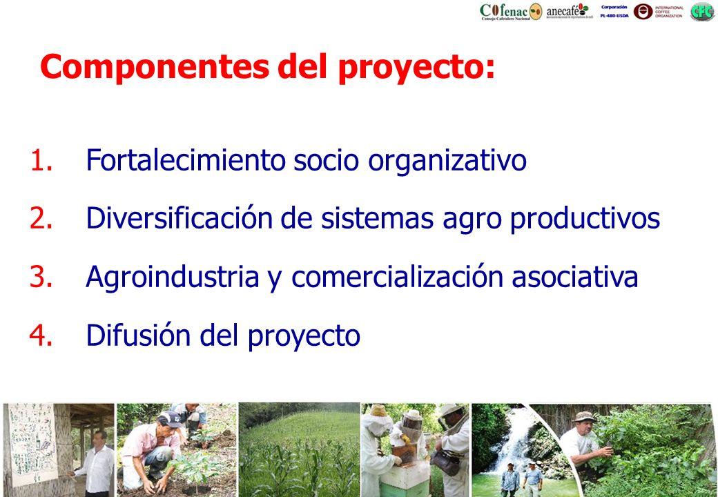 Componentes del proyecto: 1.Fortalecimiento socio organizativo 2.Diversificación de sistemas agro productivos 3.Agroindustria y comercialización asoci