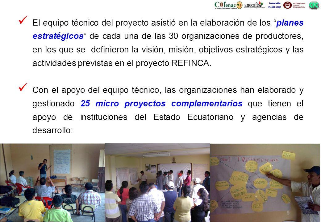 El equipo técnico del proyecto asistió en la elaboración de los planes estratégicos de cada una de las 30 organizaciones de productores, en los que se