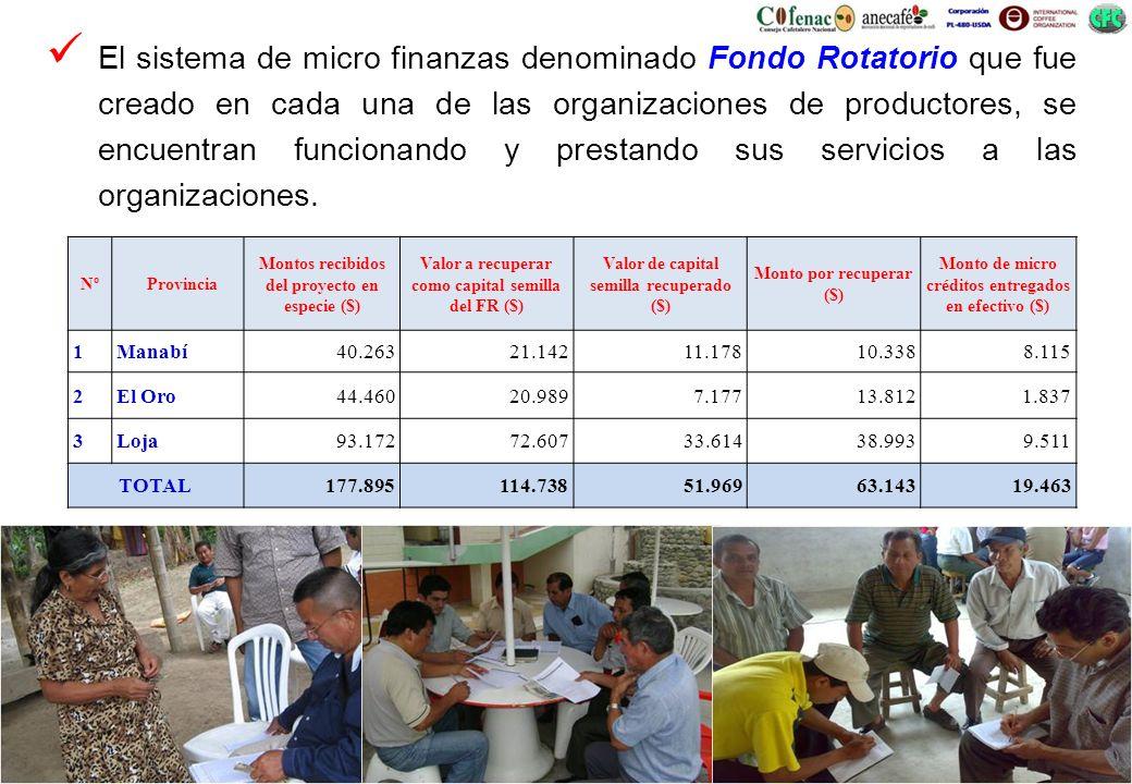 El sistema de micro finanzas denominado Fondo Rotatorio que fue creado en cada una de las organizaciones de productores, se encuentran funcionando y p