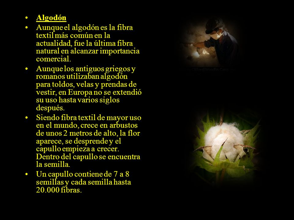 Fibras de origen vegetal Las fibras vegetales son principalmente de celulosa, que es resistente a los álcalis. Estas fibras son asimismo resistentes a