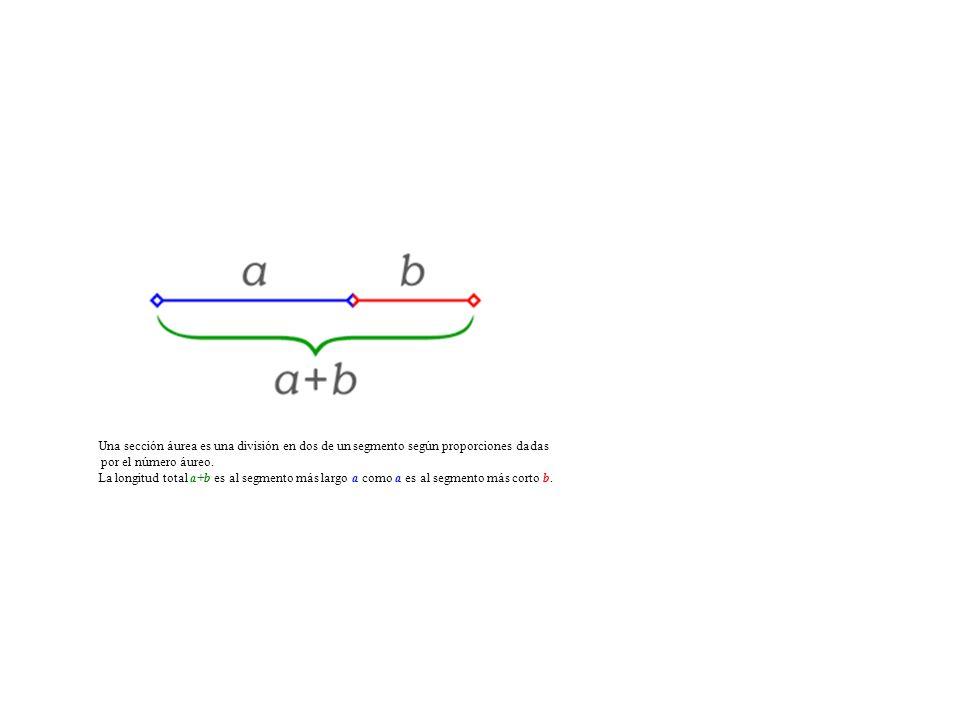 Una sección áurea es una división en dos de un segmento según proporciones dadas por el número áureo. La longitud total a+b es al segmento más largo a
