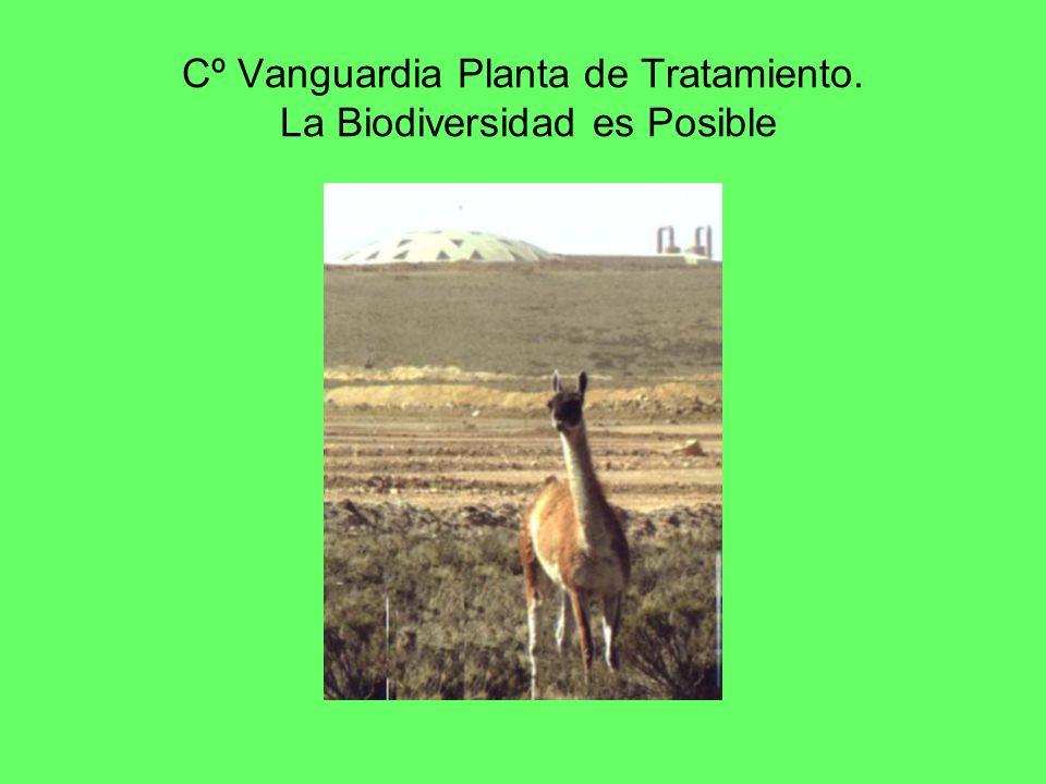 Cº Vanguardia Planta de Tratamiento. La Biodiversidad es Posible