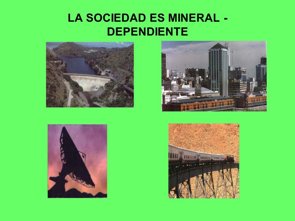 LA SOCIEDAD ES MINERAL - DEPENDIENTE